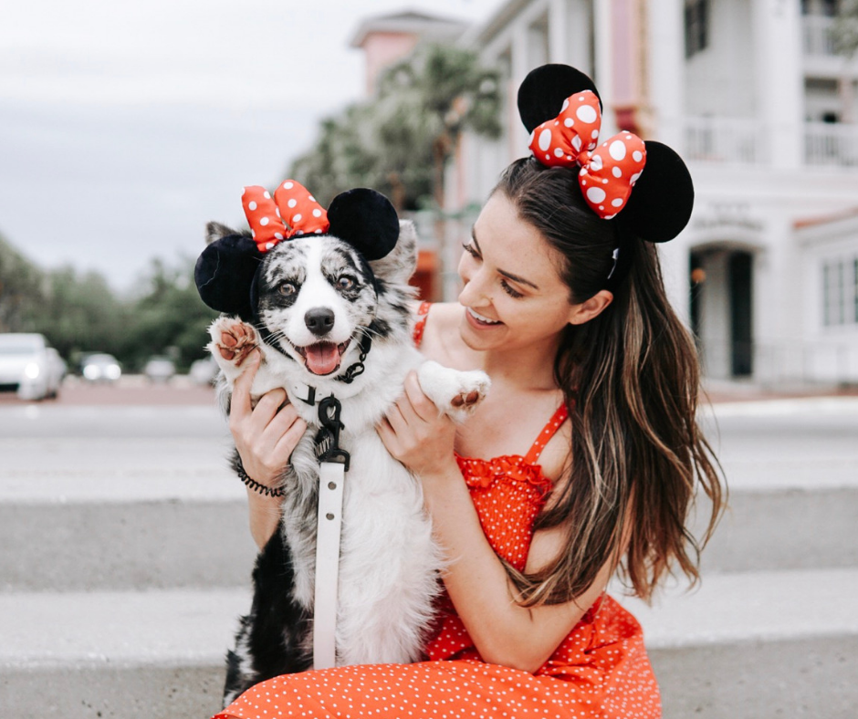 Three Days in Orlando, Florida | Dog-Friendly Travel Guide